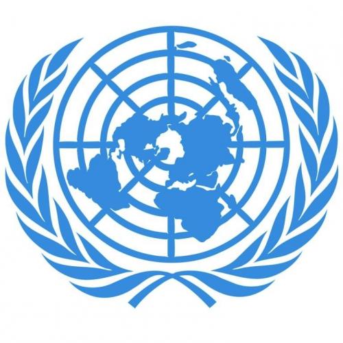 logo ONU.jpg