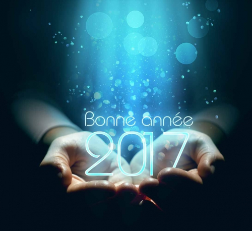 Photo-Montage-Bonne-Annee-2017.jpg