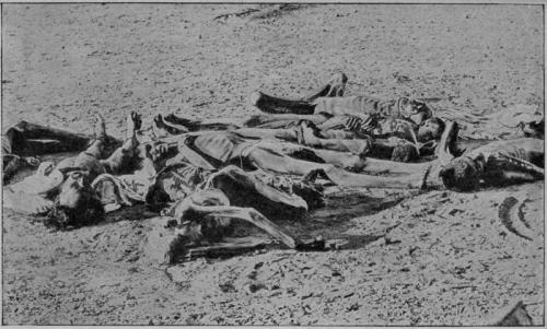 victimes de la famine.png