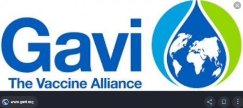 Logo GAVI.JPG
